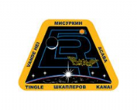 OFFICIAL NASA ISS 54 SPACE STATION PIN